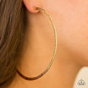 Paparazzi Big Hoop Earrings